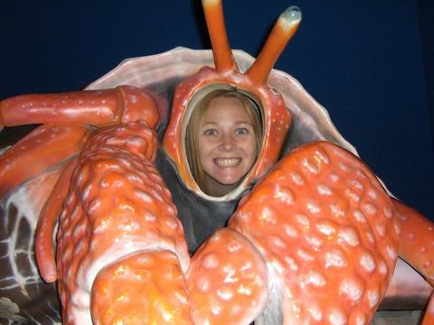 Lisa the Hermit Crab