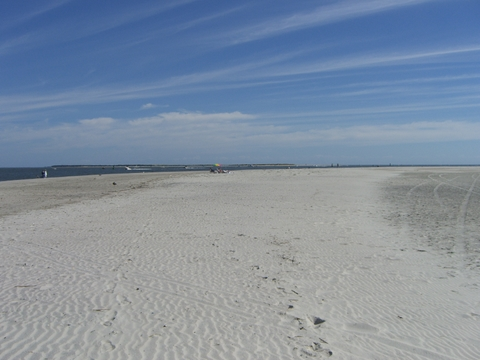 Beach at Fort Macon State Park